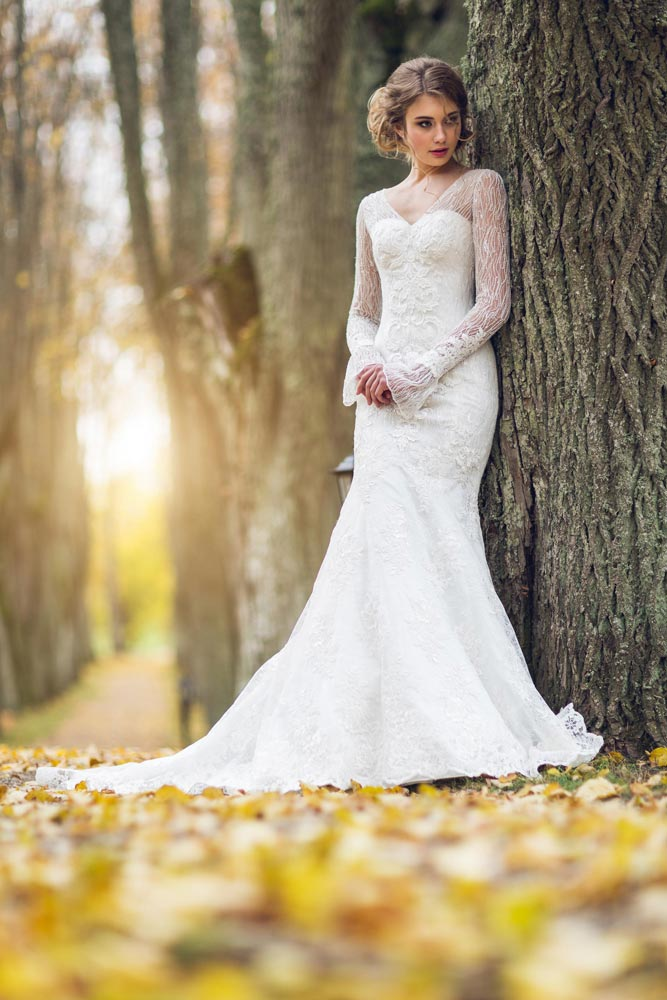 Long Sleeve Lace Fishtail Wedding Dress for Perfect Celebration