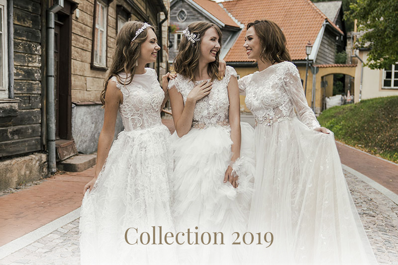 Collection 2019 wedding dresses